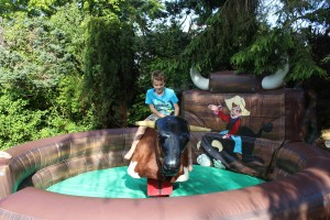 Jest Events Rodeo Bull Hire