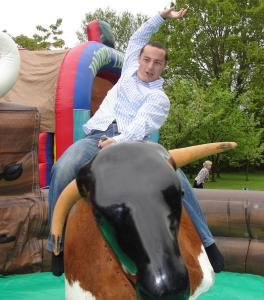 rodeo bull hire southampton